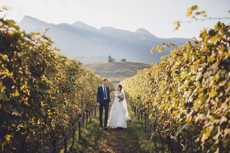 Hochzeit Weinreben Heirat